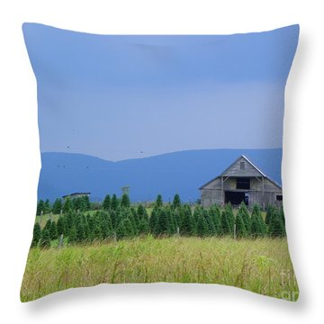 Throw Pillow featuring the photograph Christmas Tree Farm by Eve Spring