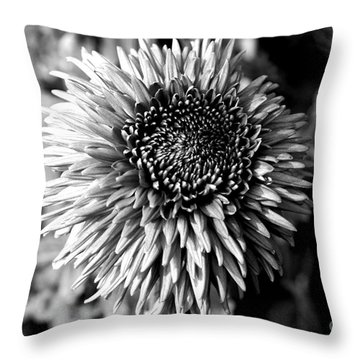 Throw Pillow featuring the photograph Chrysanthemum In Monochrome by Pravine Chester