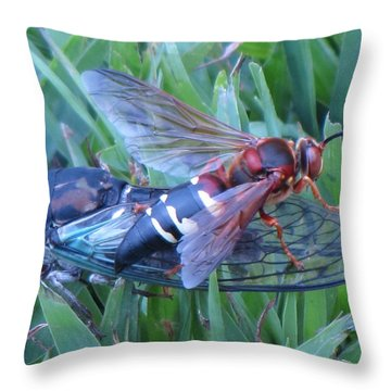 Throw Pillow featuring the photograph Cicada Killer by John Crothers