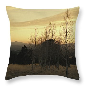 Cielo D'oro Throw Pillow