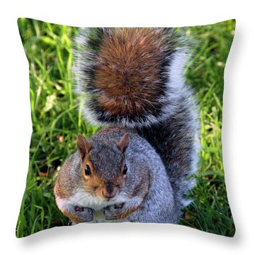 City Squirrel Throw Pillow