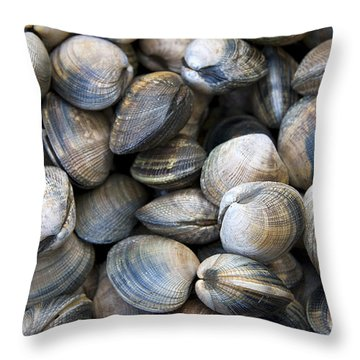 Clam Shell Background Throw Pillow by Jane Rix