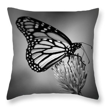 Classic Beauty Throw Pillow by Skip Willits