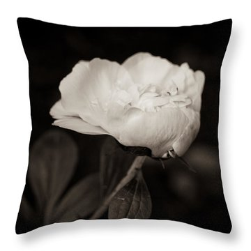 Throw Pillow featuring the photograph Classic Peony by Sara Frank