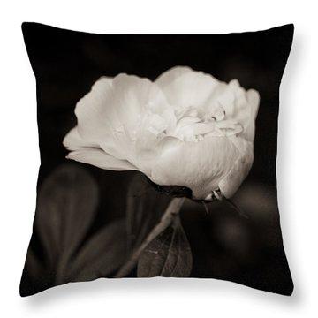 Classic Peony Throw Pillow by Sara Frank