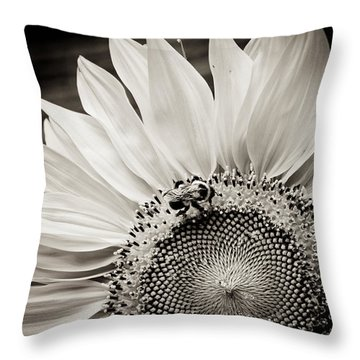 Classic Sunflower Throw Pillow by Sara Frank