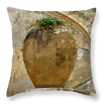 Clay Pot Throw Pillow by Lainie Wrightson
