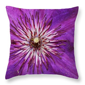 Clematis Close-up Throw Pillow by Bruce Bley