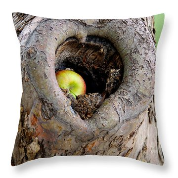 Close To The Heart Throw Pillow by Vicki Pelham