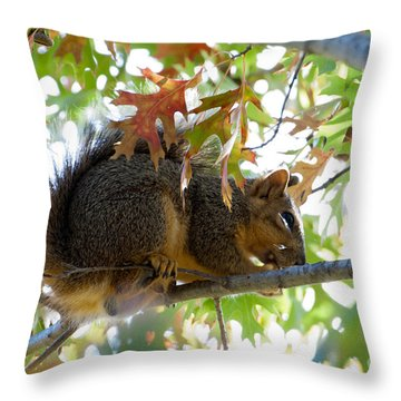 Checking The Side Yard For Dangers Throw Pillow