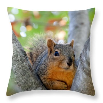 I Swear It Was Not Me Throw Pillow