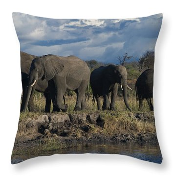 Clouds And Elephants Throw Pillow