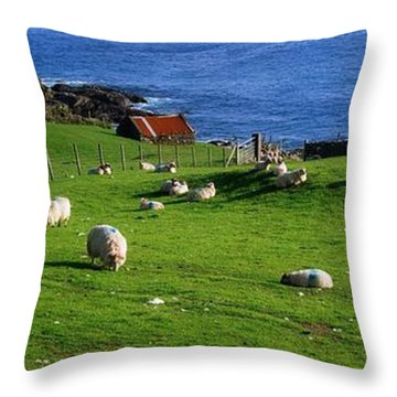 Co Cork, Beara Peninsula Throw Pillow by The Irish Image Collection