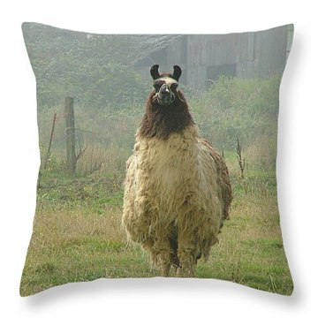 Throw Pillow featuring the photograph Coast Llama by Wendy McKennon