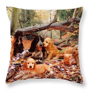 Cocker Spaniel Throw Pillow by Jane Burton