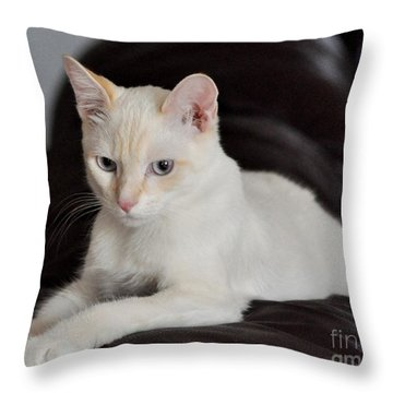 Coconut Throw Pillow by John Black