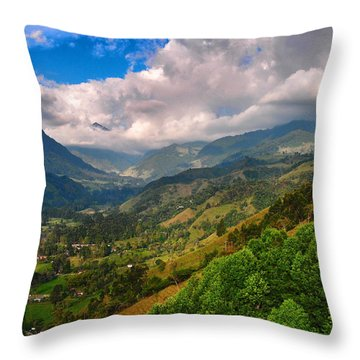 Cocora Valley Throw Pillow by Skip Hunt