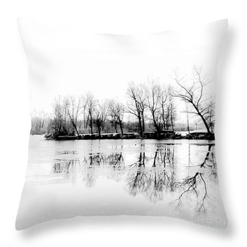 Cold Silence Throw Pillow by Hannes Cmarits