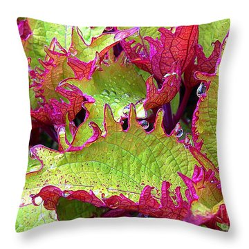 Coleus With Raindrops Throw Pillow by Judi Bagwell