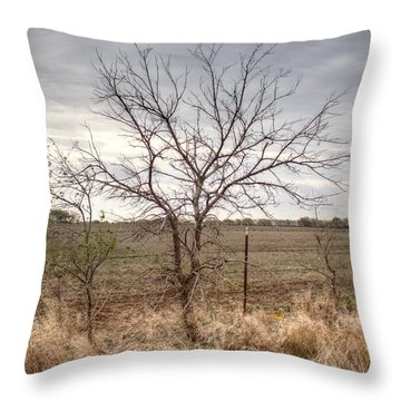 Color - Country Tree Throw Pillow