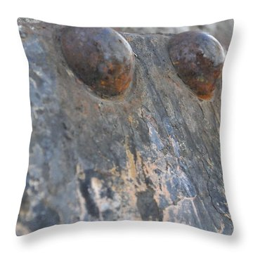 Throw Pillow featuring the photograph Color Of Steel 7 by Fran Riley