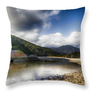 Color Of The Rocks V3 Throw Pillow