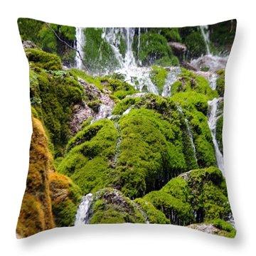 Throw Pillow featuring the photograph Colorado 6 by Deniece Platt