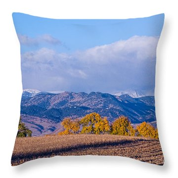 Colorado Autumn Morning Scenic View Throw Pillow by James BO  Insogna