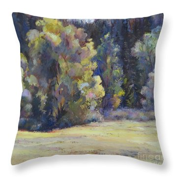 Colorado Colors Throw Pillow
