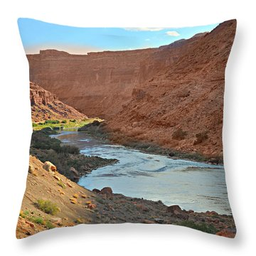 Colorado River Canyon 1 Throw Pillow by Marty Koch