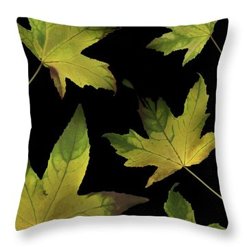 Colorful Autumn Leaves Throw Pillow by Deddeda