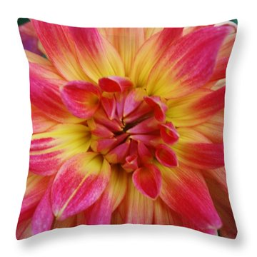 Colorful Dahlia 1 Throw Pillow by Bruce Bley