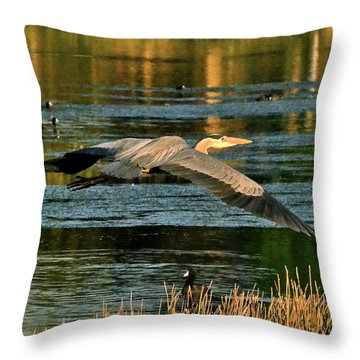 Colorful Evening Flight Throw Pillow by Carol  Bradley