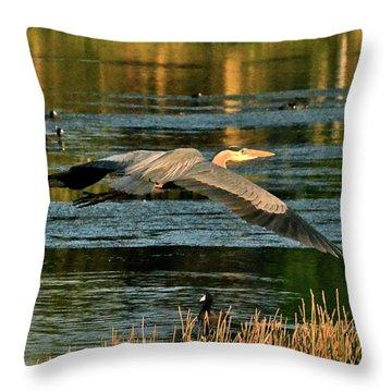Colorful Evening Flight Throw Pillow
