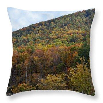 Colorful Mountain Throw Pillow
