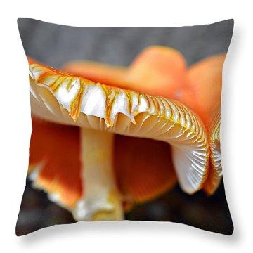 Colorful Mushrooms Throw Pillow by Susan Leggett