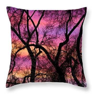 Colorful Silhouetted Trees 21 Throw Pillow by James BO  Insogna