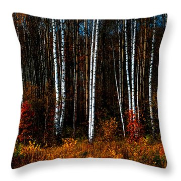 Colors Of Fall Throw Pillow by Jenny Rainbow