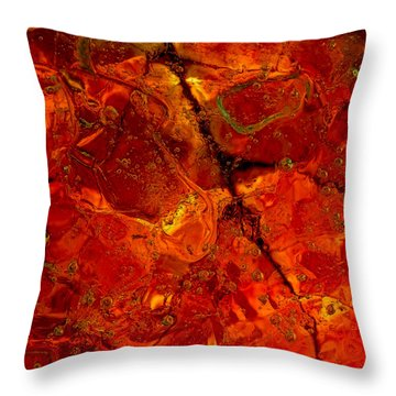 Colors Of Nature 3 Throw Pillow by Sami Tiainen