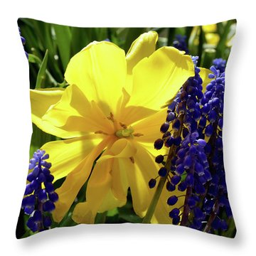Throw Pillow featuring the photograph Colors Of Spring by Pravine Chester