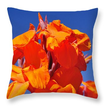 Colors Of Summer Throw Pillow by Kaye Menner
