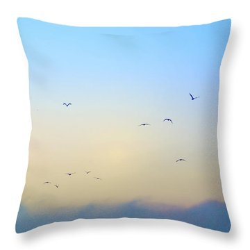 Come Fly With Me Throw Pillow by Bill Cannon
