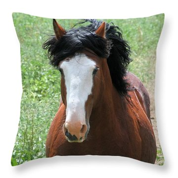Coming At You. Throw Pillow