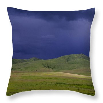 Coming Of The Storm Throw Pillow