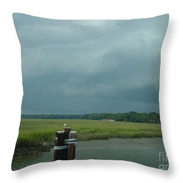 Throw Pillow featuring the photograph Coming On  by Mark Robbins