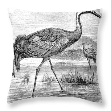 Common Crane Throw Pillow by Granger