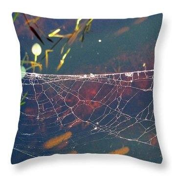 Throw Pillow featuring the photograph Complexity Of The Web by Nina Prommer
