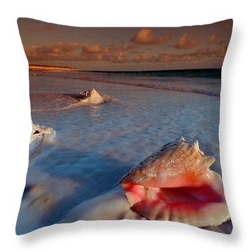 Conch Shell On Beach Throw Pillow by Novastock and Photo Researchers
