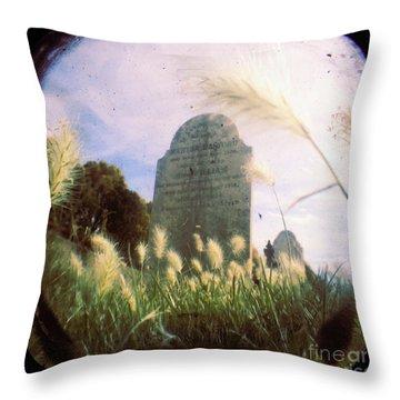 Concilation Throw Pillow by Andrew Paranavitana