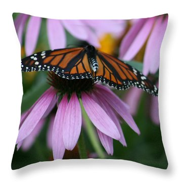 Throw Pillow featuring the photograph Cone Flowers And Monarch Butterfly by Kay Novy